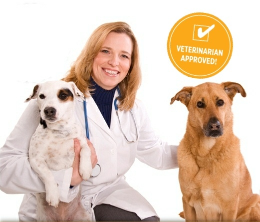 VeterinarianApproved001
